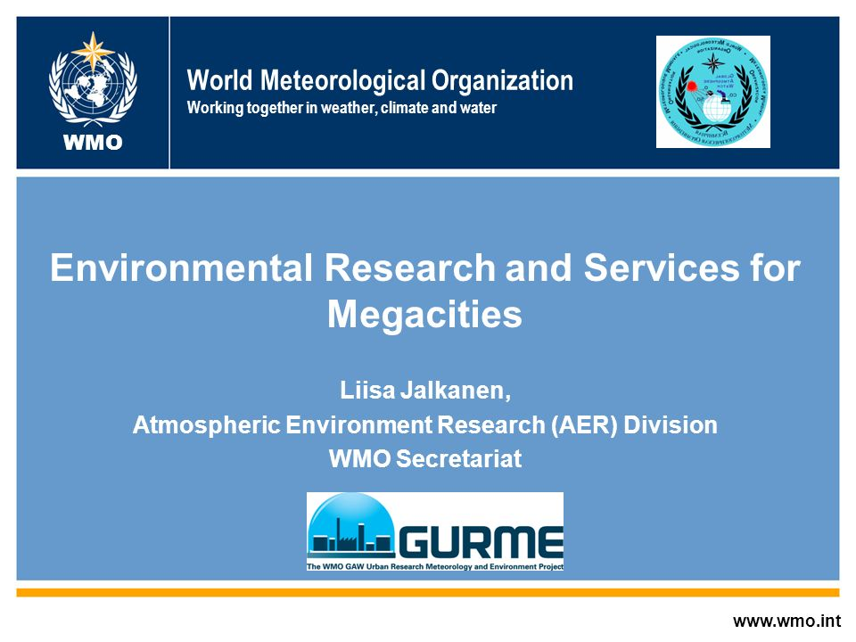 Environmental Research and Services for Megacities