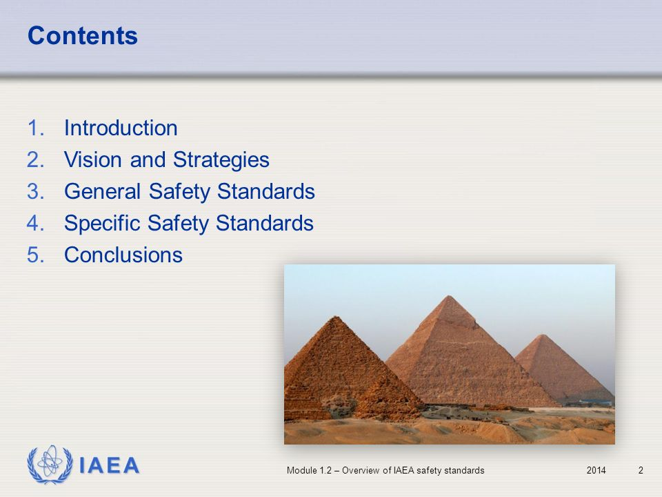 Contents Introduction Vision and Strategies General Safety Standards