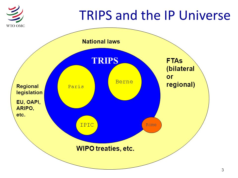 TRIPS and the IP Universe