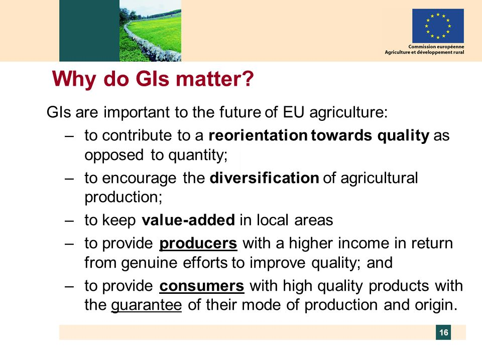 Why do GIs matter GIs are important to the future of EU agriculture: