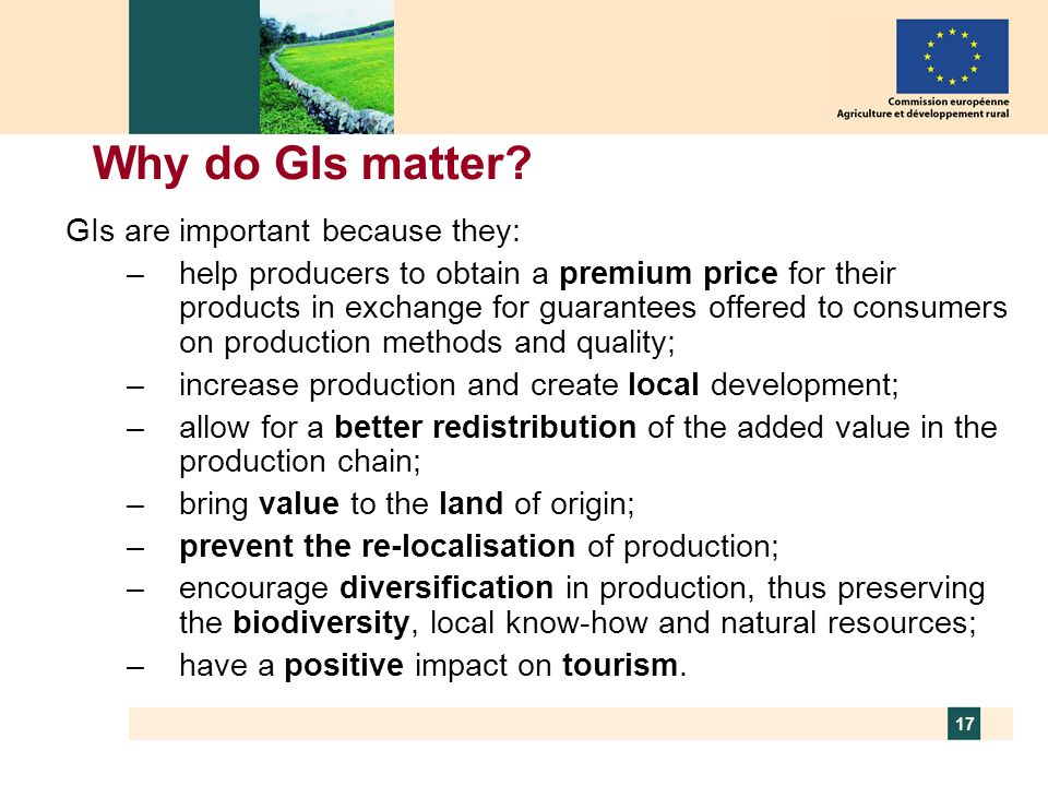 Why do GIs matter GIs are important because they: