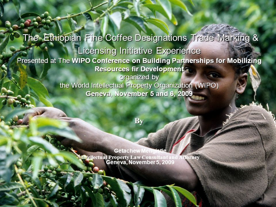 The Ethiopian Fine Coffee Designations Trade Marking & Licensing Initiative Experience Presented at The WIPO Conference on Building Partnerships for Mobilizing Resources fir Development organized by the World Intellectual Property Organization (WIPO) Geneva, November 5 and 6, 2009 By