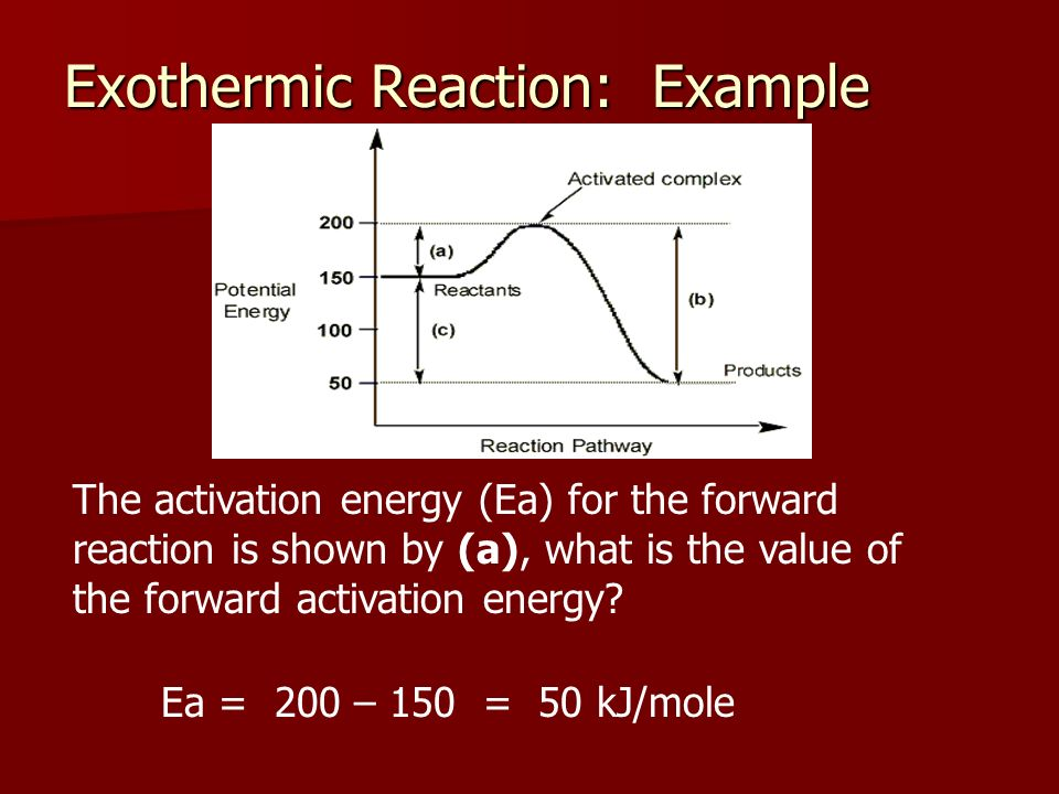 Exothermic Reaction: Example