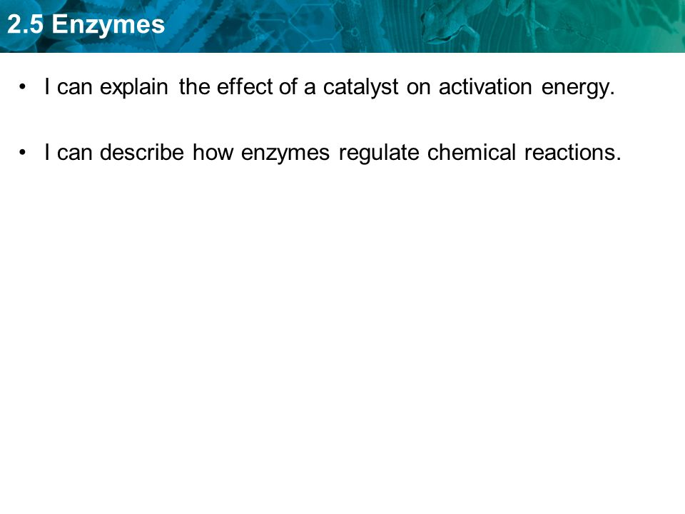 I can explain the effect of a catalyst on activation energy.