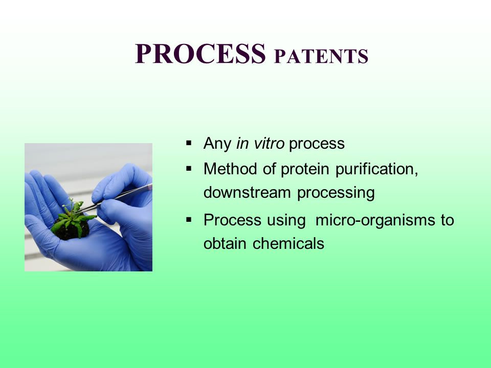 PROCESS PATENTS Any in vitro process