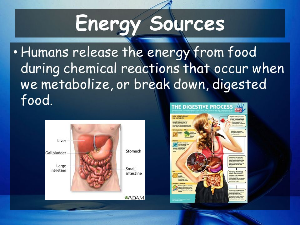 Energy Sources Humans release the energy from food during chemical reactions that occur when we metabolize, or break down, digested food.