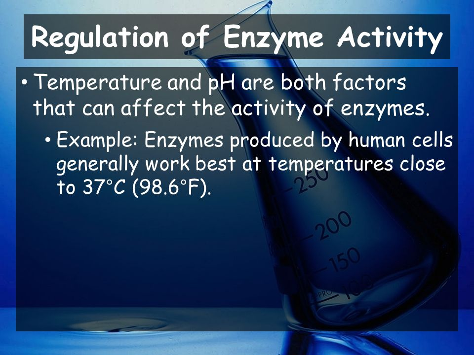 Regulation of Enzyme Activity