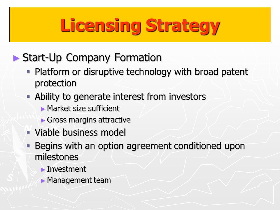 Licensing Strategy Start-Up Company Formation