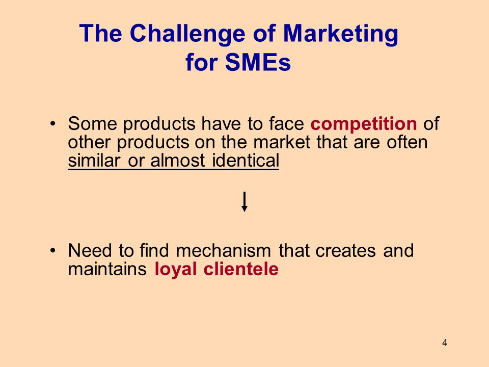 The Challenge of Marketing for SMEs