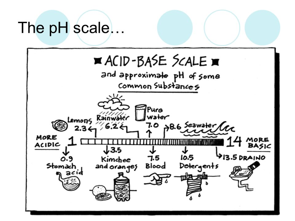 The pH scale…