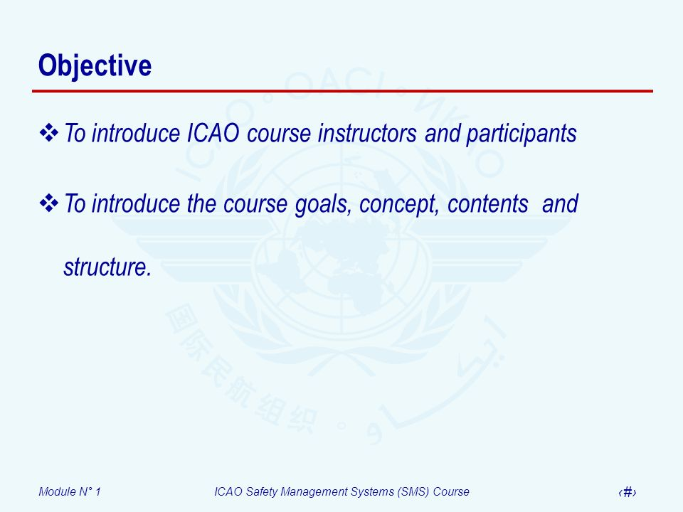 Objective To introduce ICAO course instructors and participants