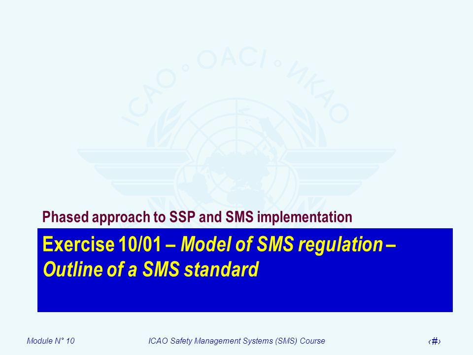 Exercise 10/01 – Model of SMS regulation – Outline of a SMS standard