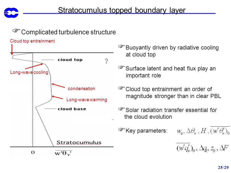 Stratocumulus topped boundary layer