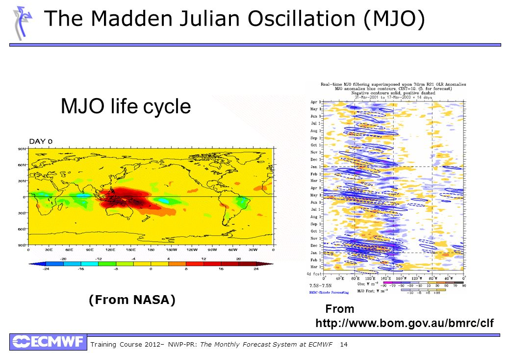 The Madden Julian Oscillation (MJO)