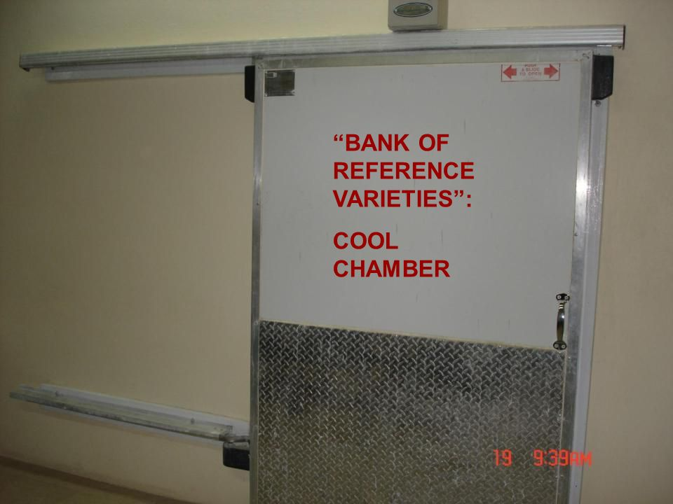 BANK OF REFERENCE VARIETIES :