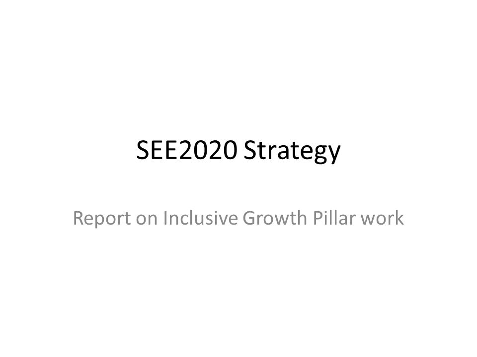 Report on Inclusive Growth Pillar work