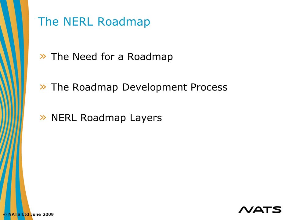 The NERL Roadmap The Need for a Roadmap