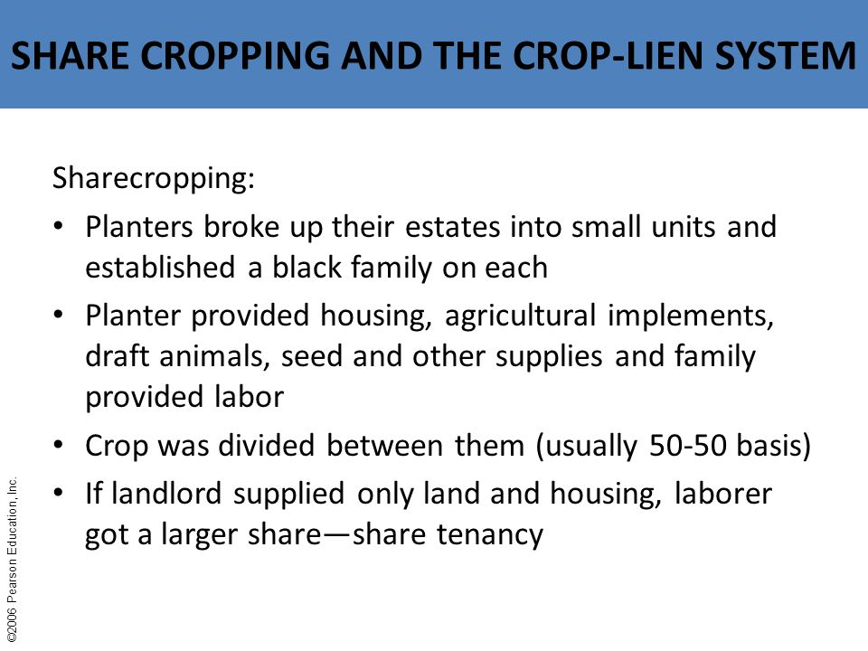 Why did the sharecropping and crop-lien systems evolve — photo 2