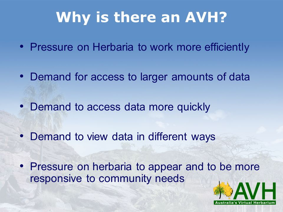 Why is there an AVH Pressure on Herbaria to work more efficiently
