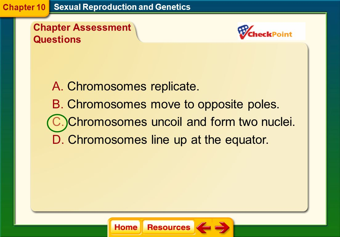 Chromosomes replicate. Chromosomes move to opposite poles.