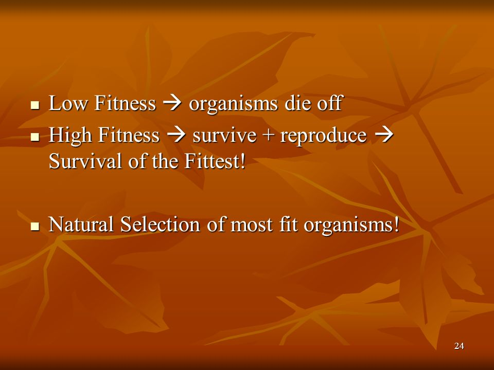 Low Fitness  organisms die off
