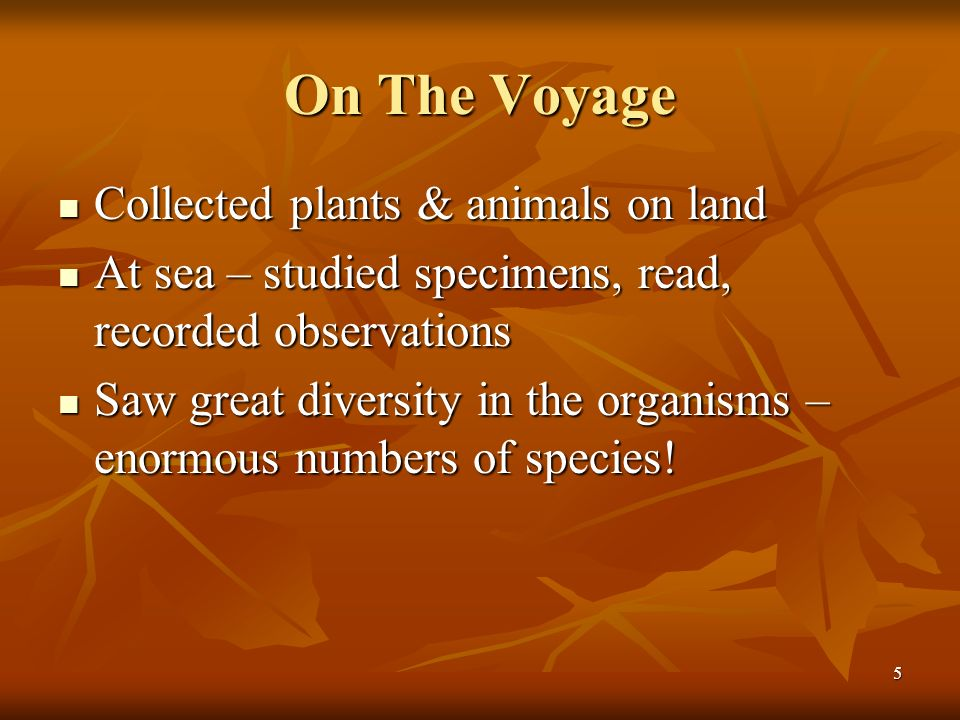On The Voyage Collected plants & animals on land