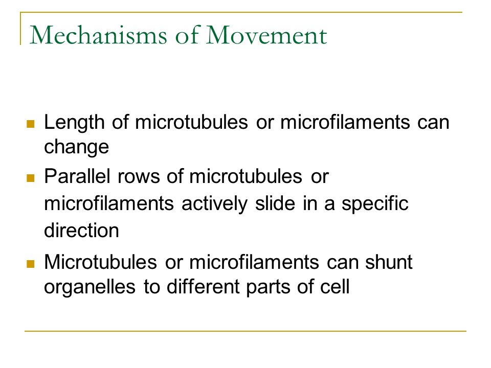Mechanisms of Movement
