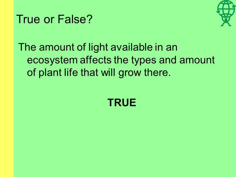 True or False The amount of light available in an ecosystem affects the types and amount of plant life that will grow there.