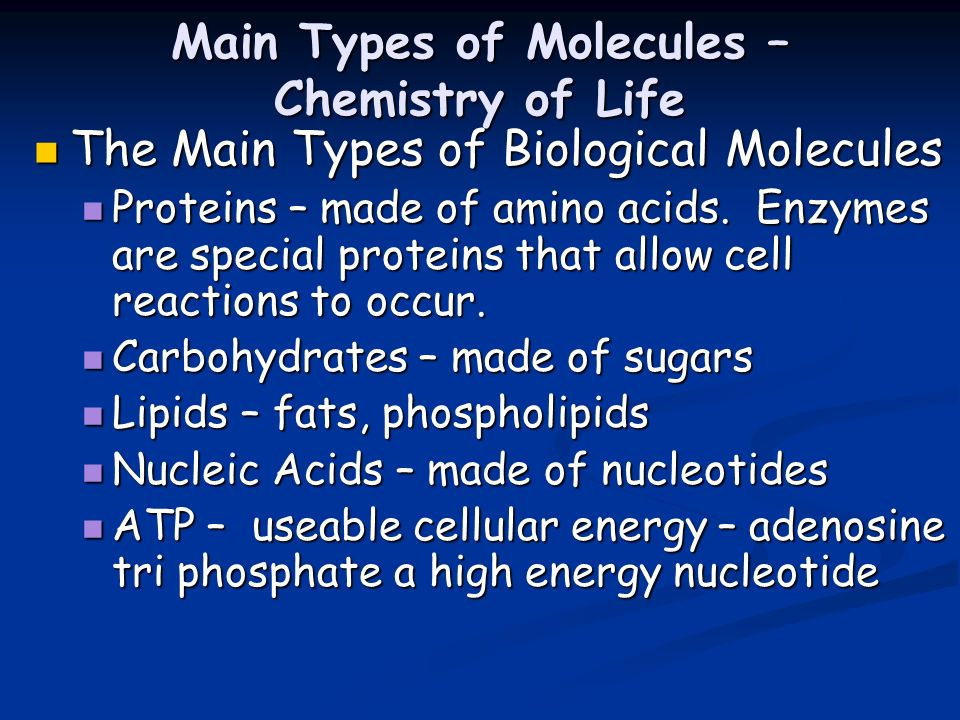 Main Types of Molecules – Chemistry of Life