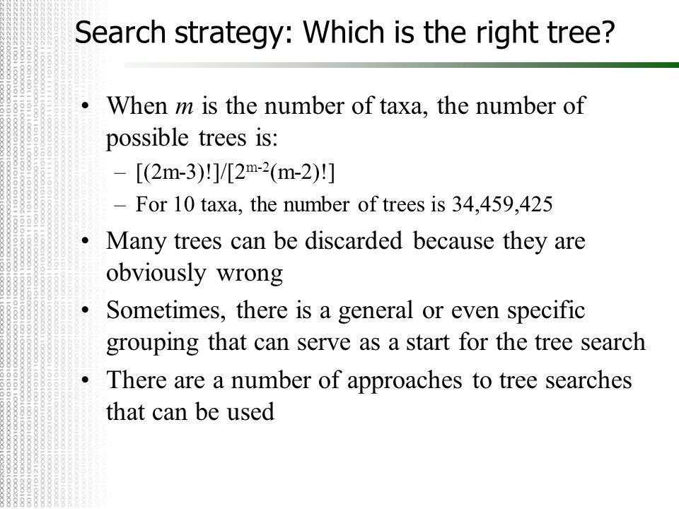 Search strategy: Which is the right tree