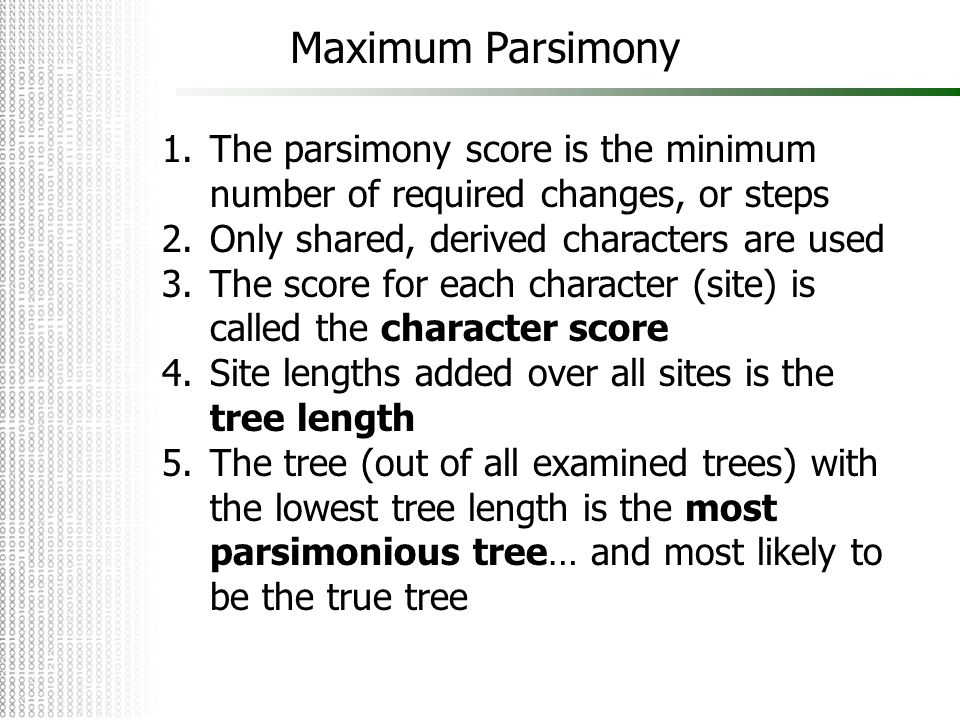 Maximum Parsimony The parsimony score is the minimum number of required changes, or steps. Only shared, derived characters are used.