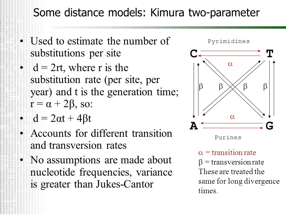 Some distance models: Kimura two-parameter