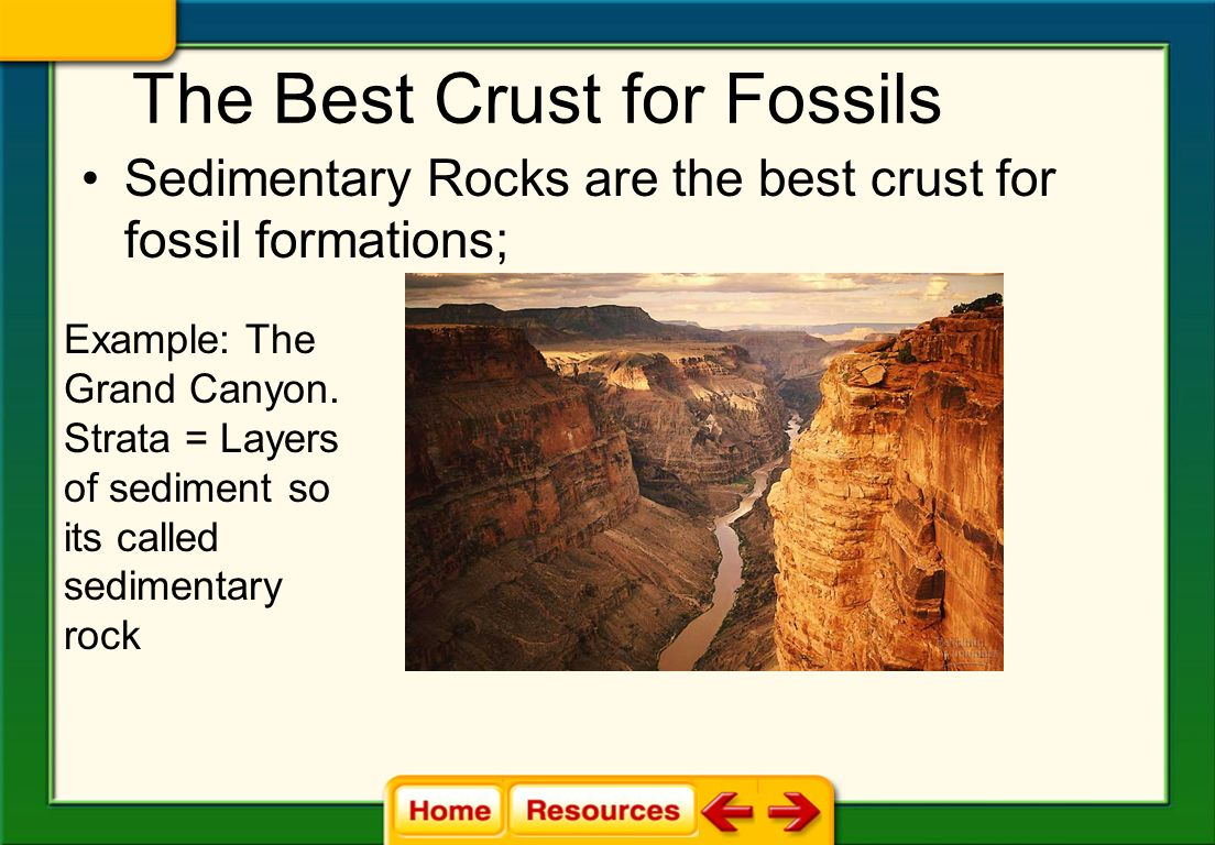 The Best Crust for Fossils