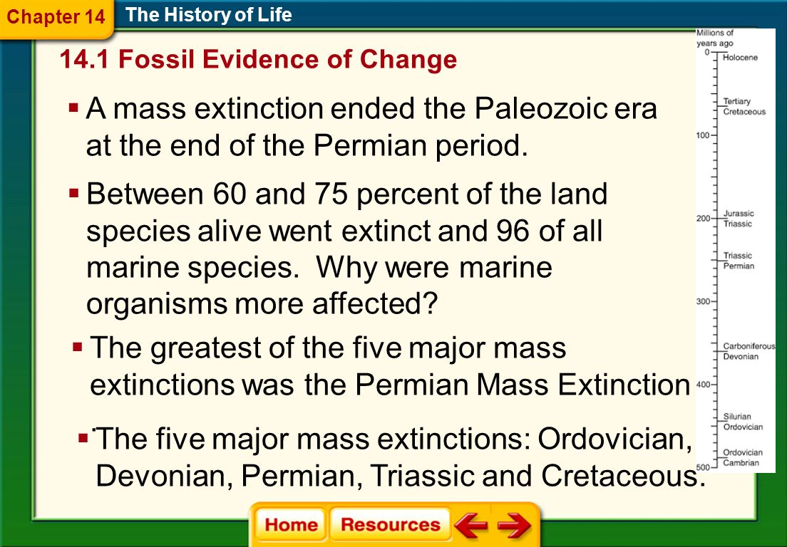 Chapter 14 The History of Life. 14.1 Fossil Evidence of Change. A mass extinction ended the Paleozoic era at the end of the Permian period.
