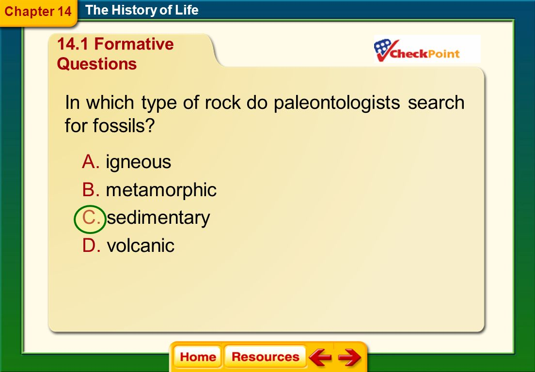 In which type of rock do paleontologists search for fossils