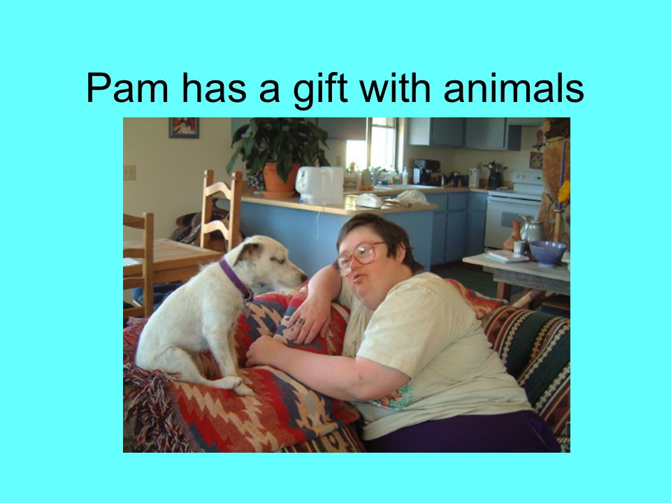 Pam has a gift with animals