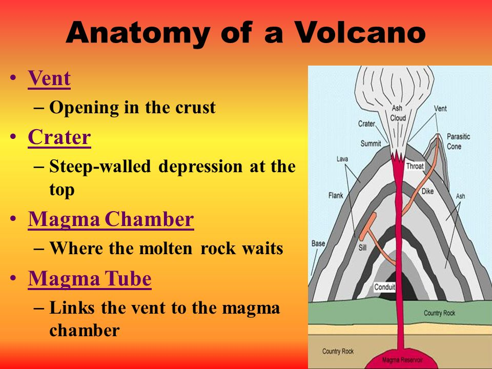 Anatomy of a Volcano Vent Crater Magma Chamber Magma Tube