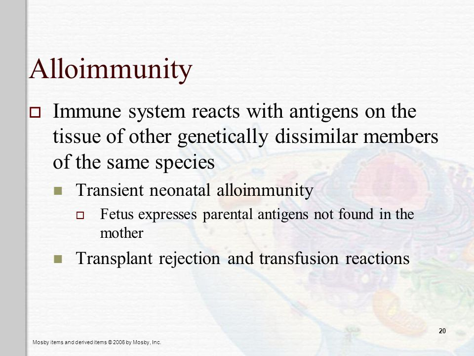 Alloimmunity Immune system reacts with antigens on the tissue of other genetically dissimilar members of the same species.