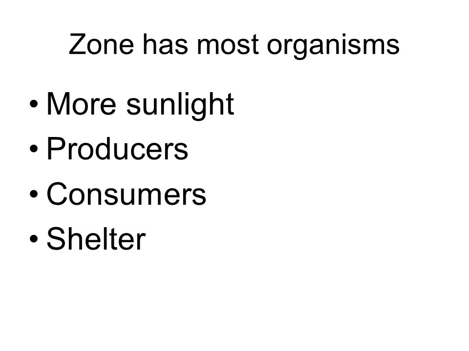 Zone has most organisms