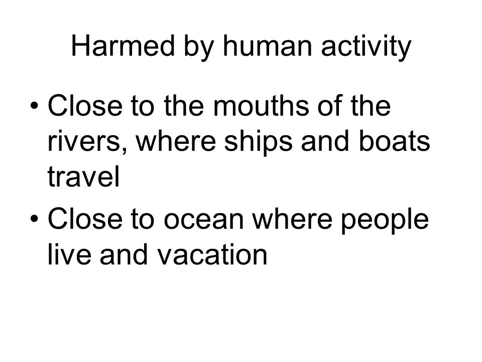 Harmed by human activity