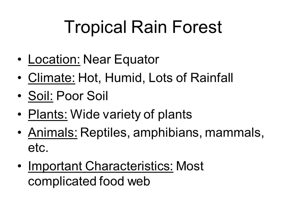 Tropical Rain Forest Location: Near Equator