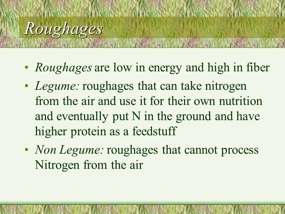 Roughages Roughages are low in energy and high in fiber