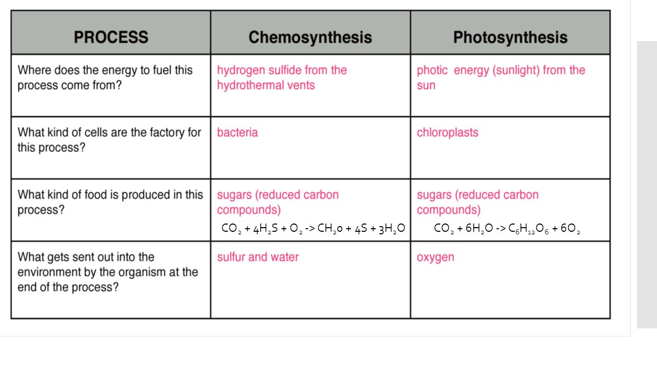 Marine science unit 5 part 1 biology review and ocean microbes 17 co2 4h2s o2 ch20 4s 3h2o co2 6h2o c6h12o6 6o2 ccuart Images