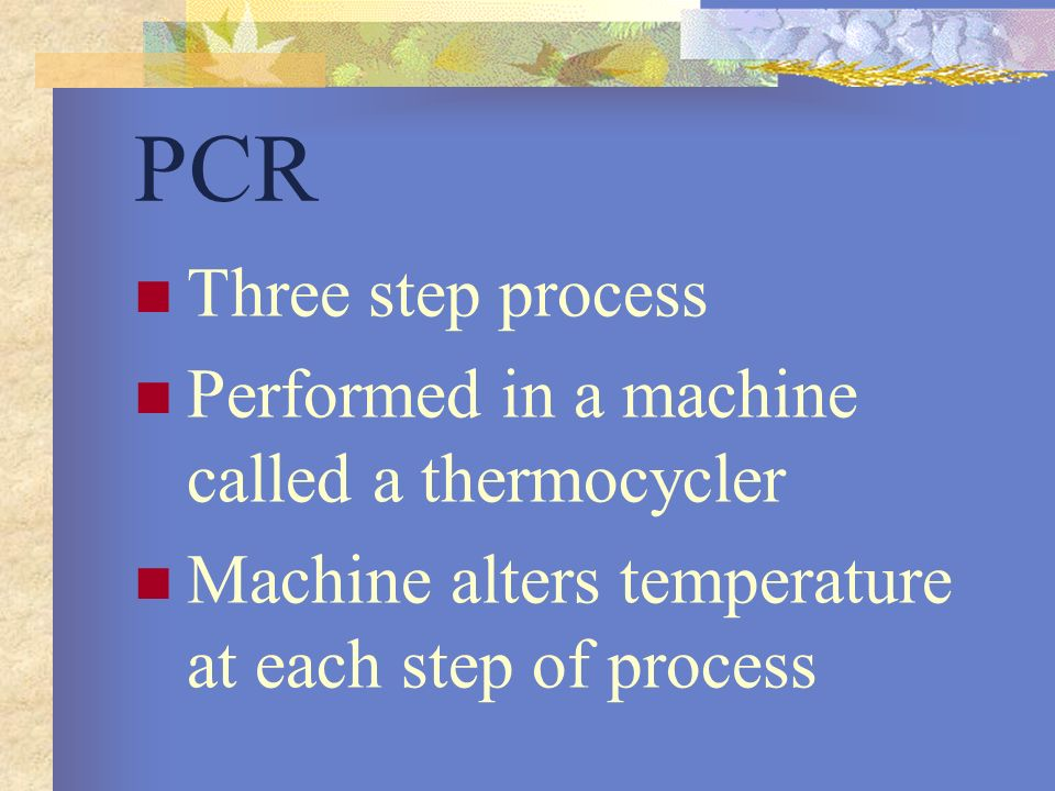 PCR Three step process Performed in a machine called a thermocycler