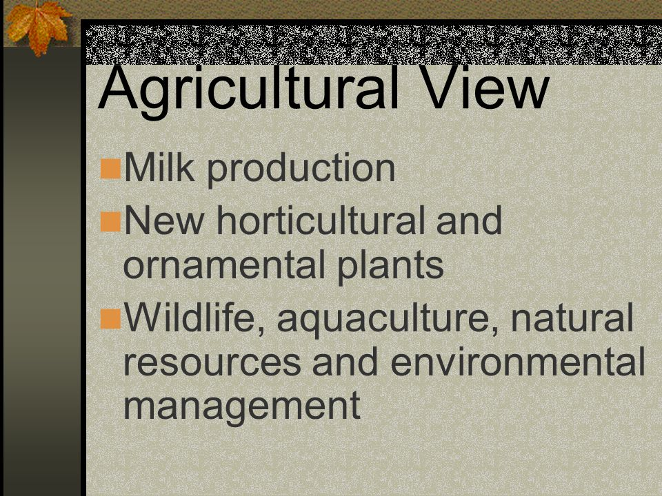 Agricultural View Milk production