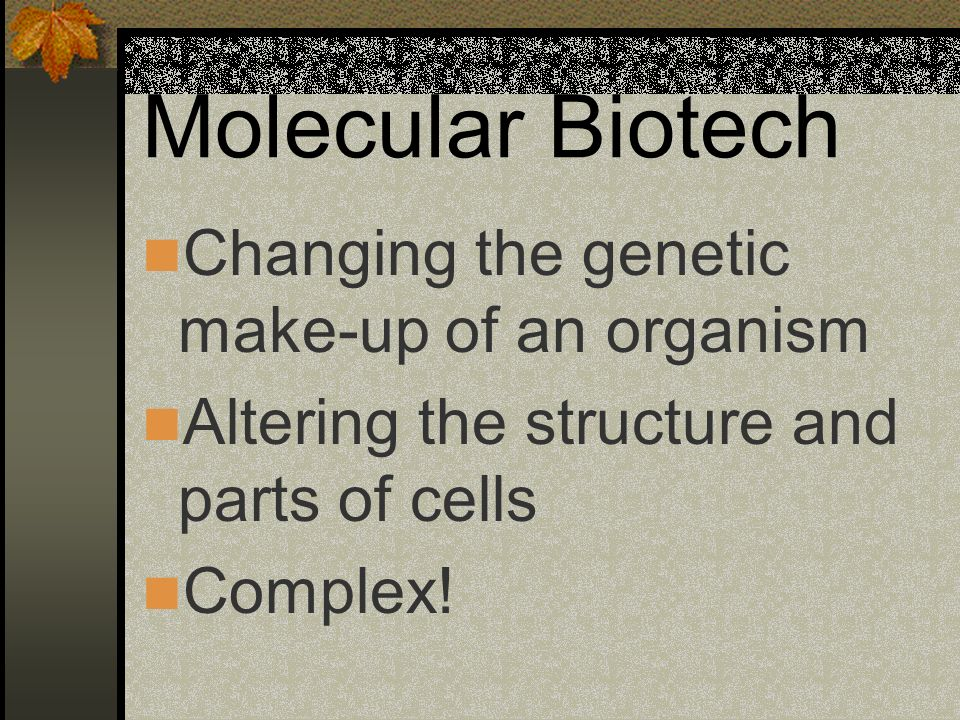 Molecular Biotech Changing the genetic make-up of an organism