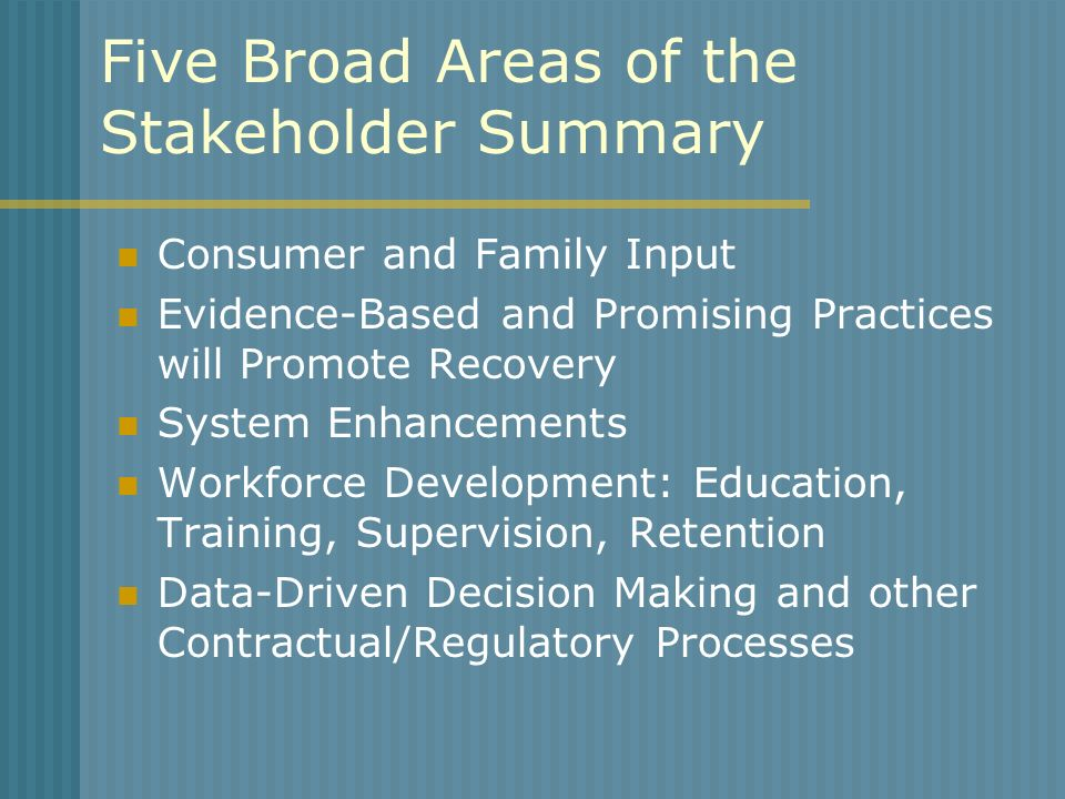 Five Broad Areas of the Stakeholder Summary