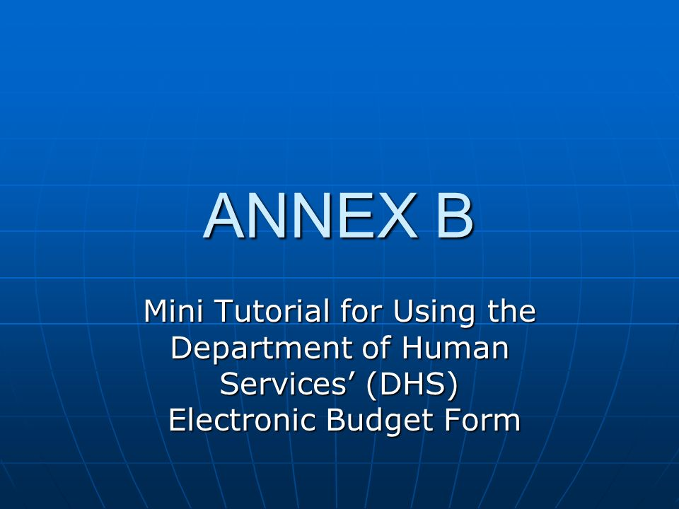 ANNEX B Mini Tutorial for Using the Department of Human Services' (DHS) Electronic Budget Form