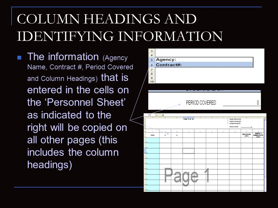 COLUMN HEADINGS AND IDENTIFYING INFORMATION