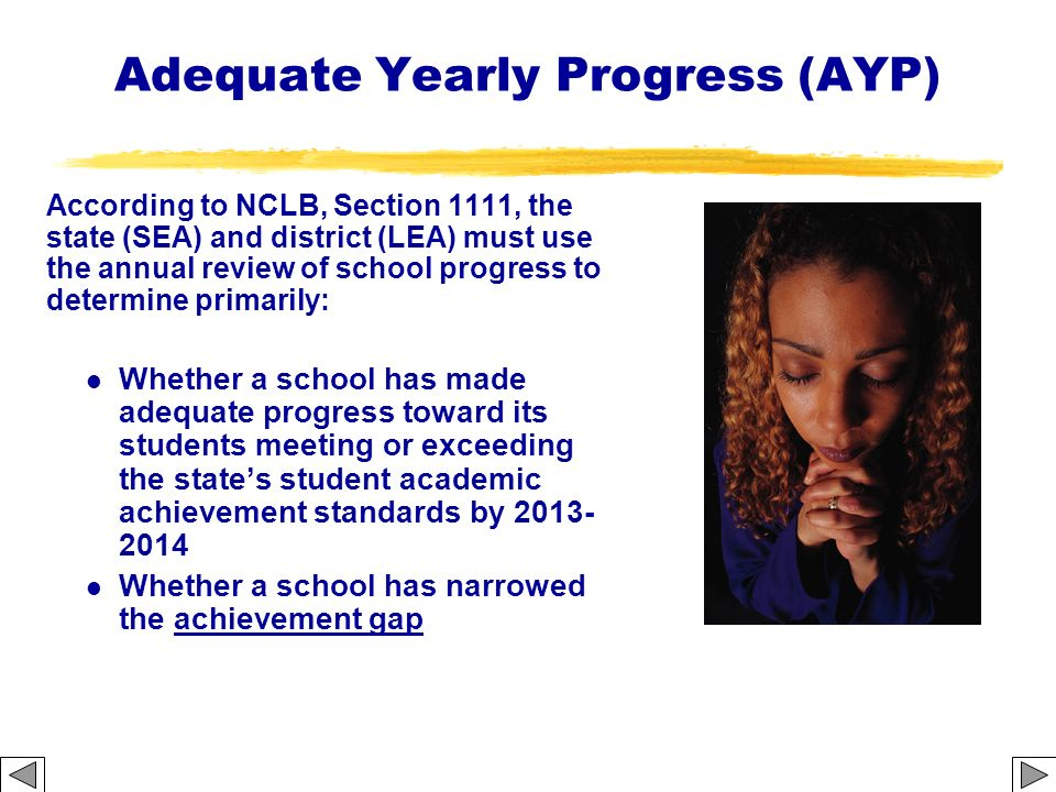 Adequate Yearly Progress (AYP)